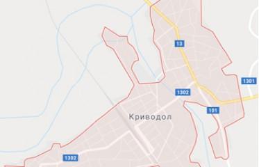 Бързи кредити в Криводол